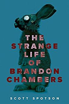 5_1_17 Strange Life Brandon Chambers